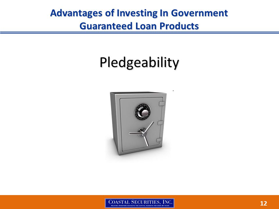 12 Advantages of Investing In Government Guaranteed Loan Products Pledgeability