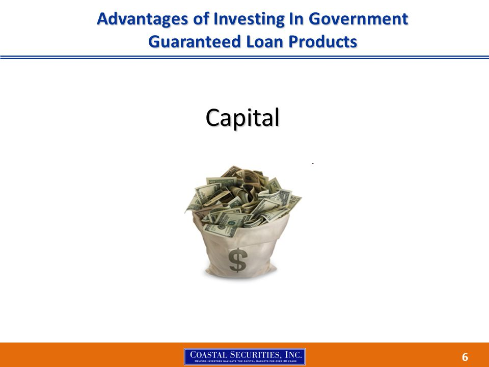 6 Advantages of Investing In Government Guaranteed Loan Products Capital