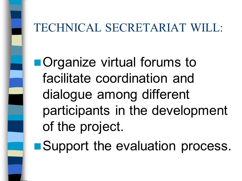 TECHNICAL SECRETARIAT WILL: Organize virtual forums to facilitate coordination and dialogue among different participants in the development of the project.