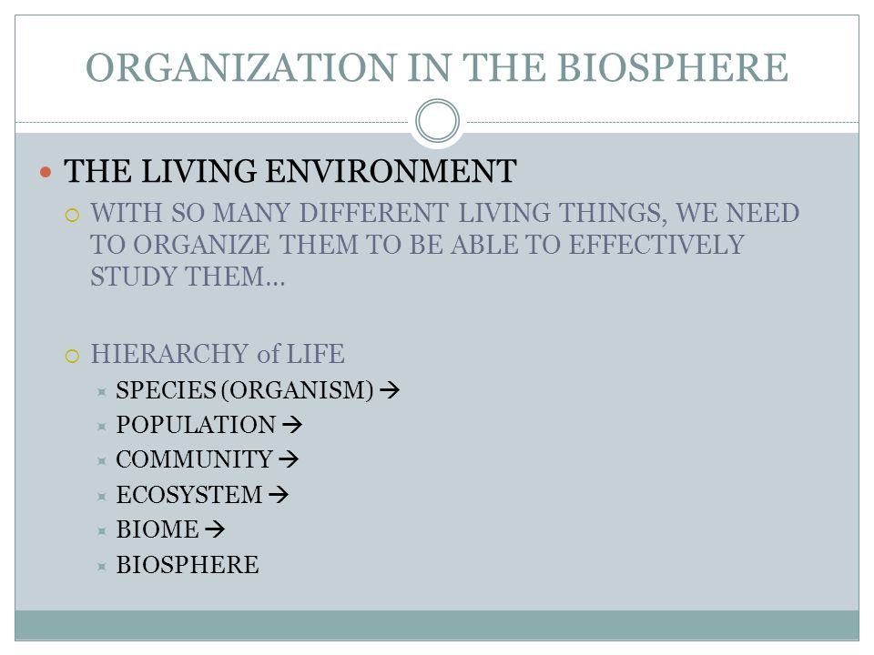 ORGANIZATION IN THE BIOSPHERE THE LIVING ENVIRONMENT  WITH SO MANY DIFFERENT LIVING THINGS, WE NEED TO ORGANIZE THEM TO BE ABLE TO EFFECTIVELY STUDY THEM…  HIERARCHY of LIFE  SPECIES (ORGANISM)   POPULATION   COMMUNITY   ECOSYSTEM   BIOME   BIOSPHERE
