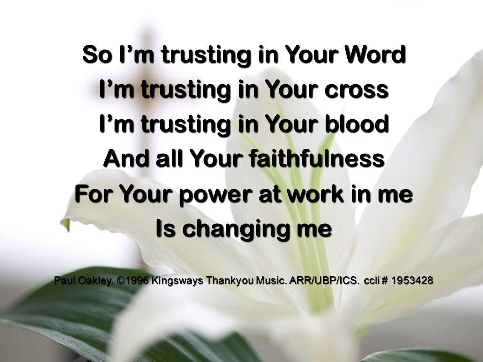 So I'm trusting in Your Word I'm trusting in Your cross I'm trusting in Your blood And all Your faithfulness For Your power at work in me Is changing me Paul Oakley.