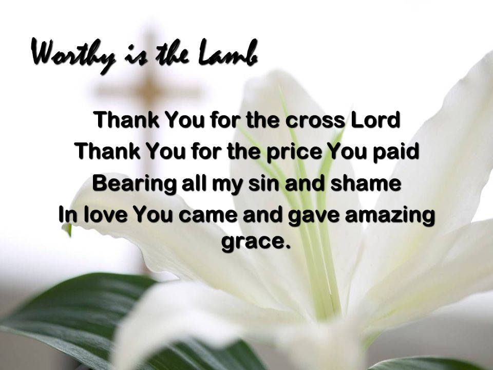 Worthy is the Lamb Thank You for the cross Lord Thank You for the price You paid Bearing all my sin and shame In love You came and gave amazing grace.