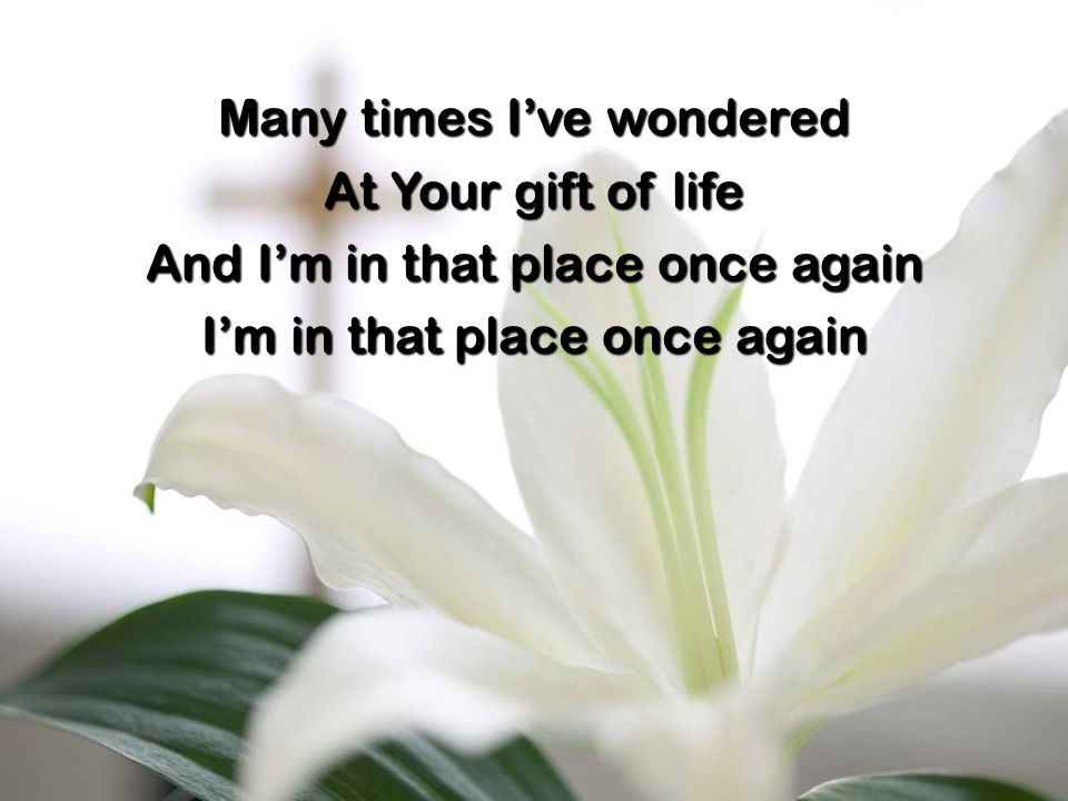 Many times I've wondered At Your gift of life And I'm in that place once again I'm in that place once again