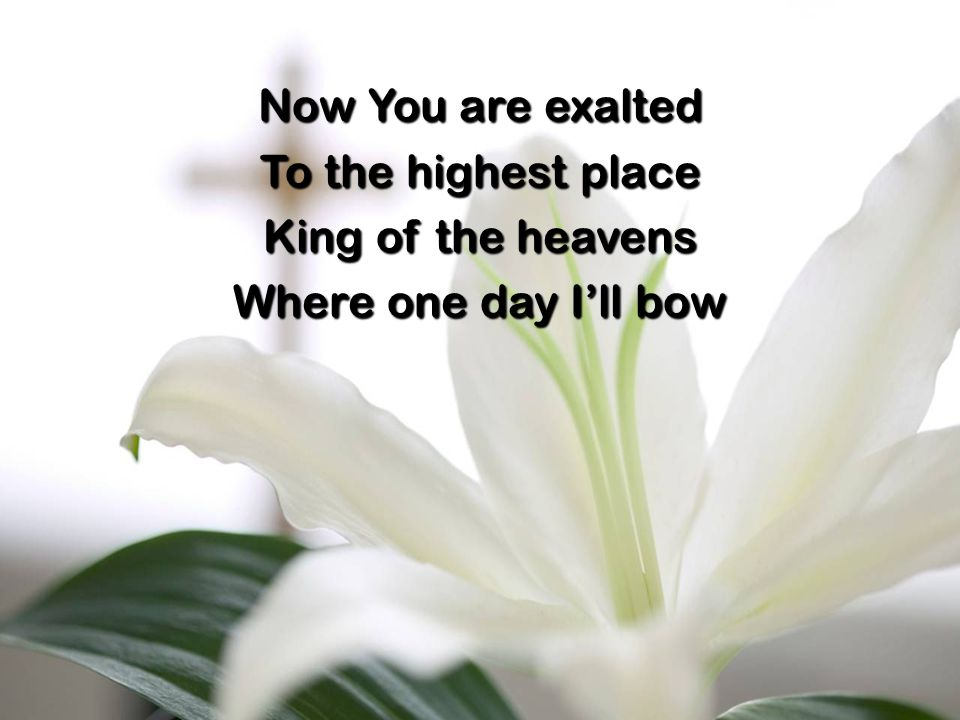 Now You are exalted To the highest place King of the heavens Where one day I'll bow