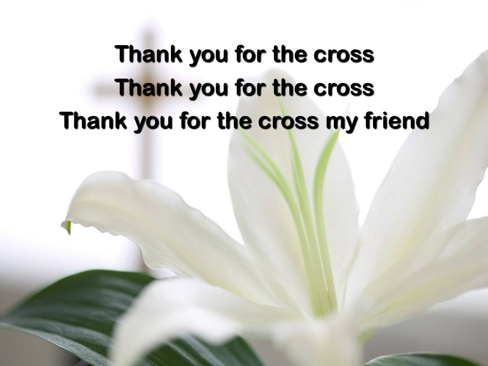 Thank you for the cross Thank you for the cross my friend