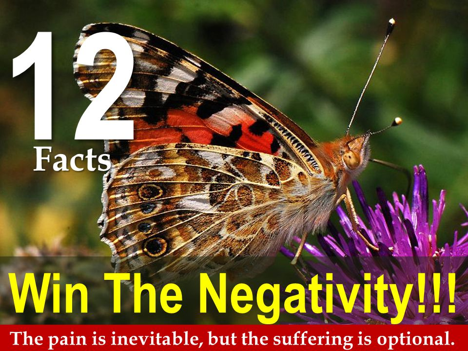 Win The Negativity!!! The pain is inevitable, but the suffering is optional. 12 Facts