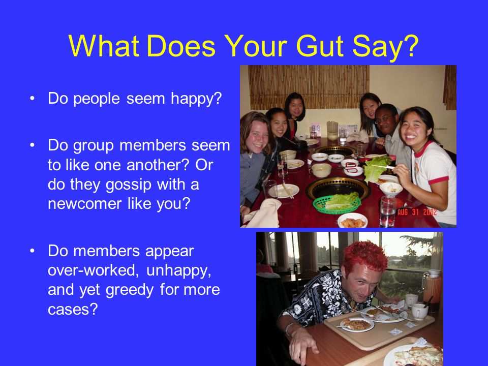 What Does Your Gut Say. Do people seem happy. Do group members seem to like one another.
