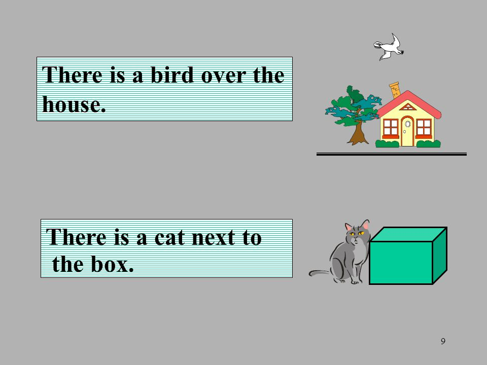 9 There is a bird over the house. There is a cat next to the box.
