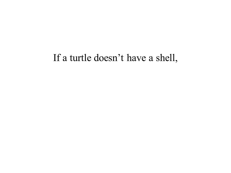 If a turtle doesn't have a shell,