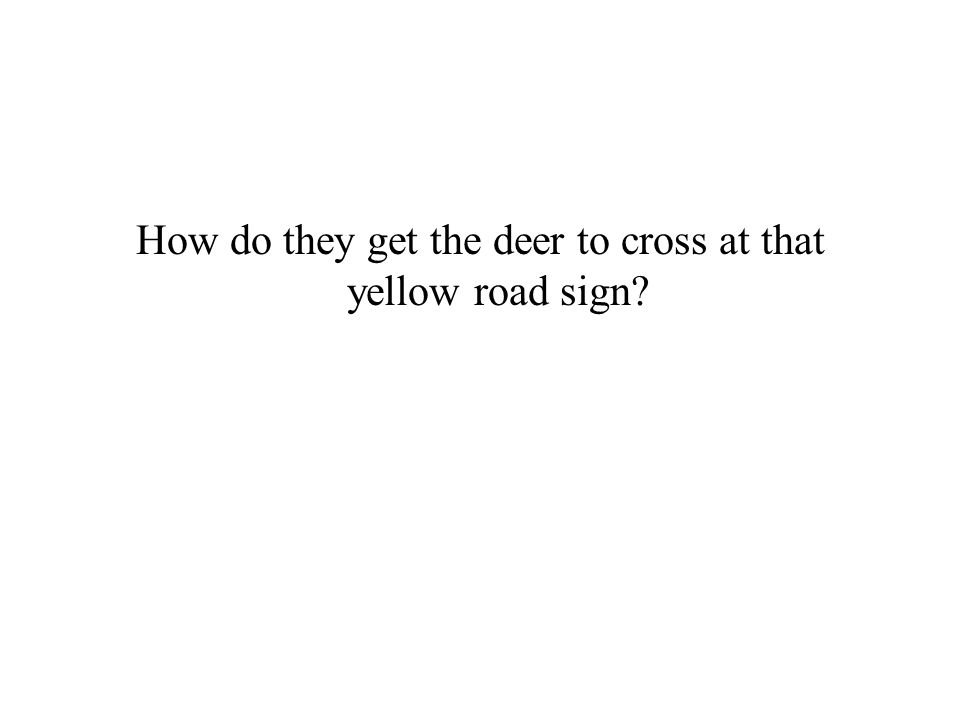How do they get the deer to cross at that yellow road sign