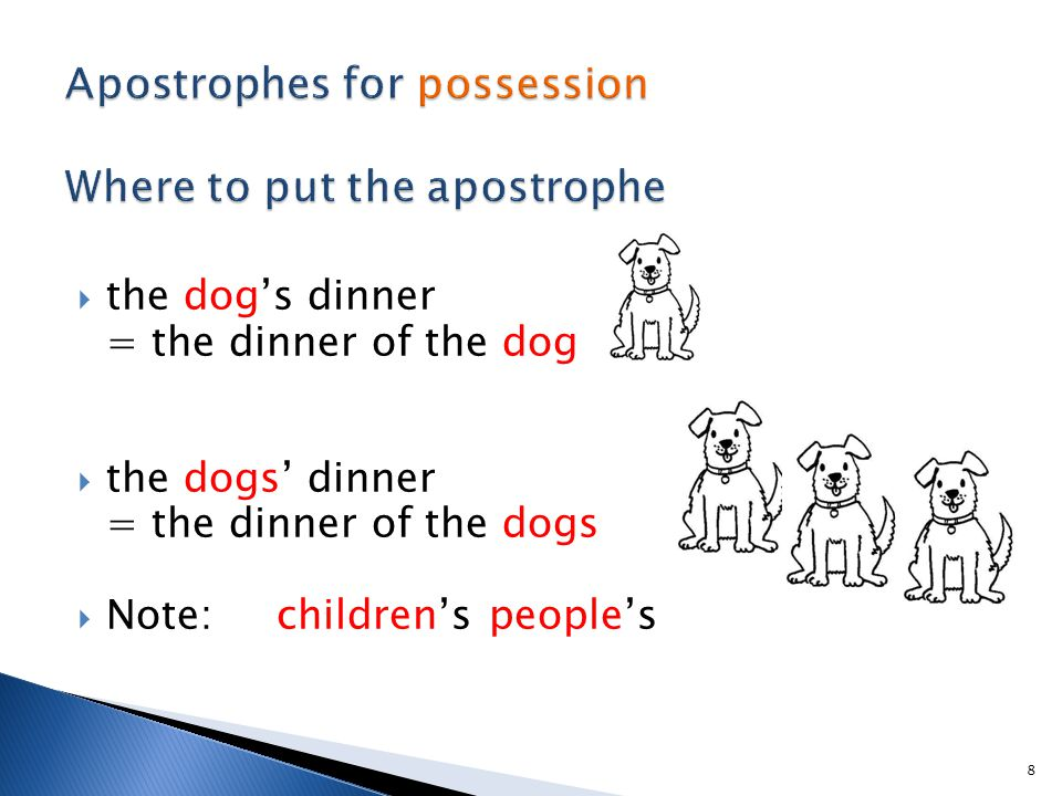  the dog's dinner = the dinner of the dog  the dogs' dinner = the dinner of the dogs  Note: children's people's 8
