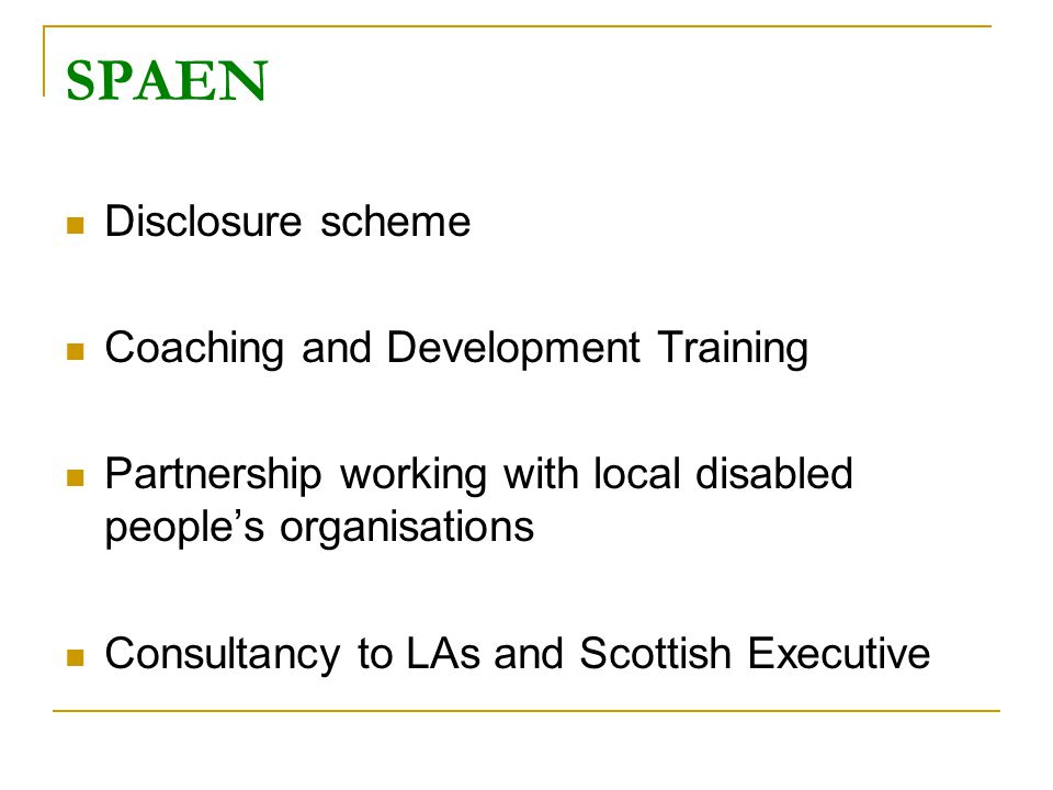 Disclosure scheme Coaching and Development Training Partnership working with local disabled people's organisations Consultancy to LAs and Scottish Executive