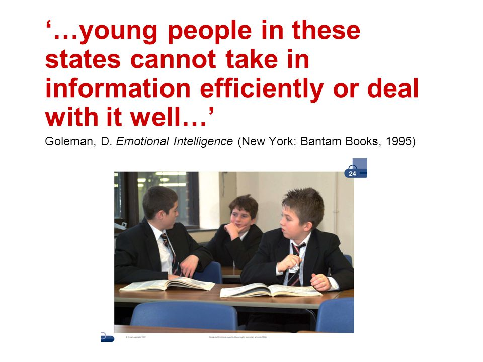 '…young people in these states cannot take in information efficiently or deal with it well…' Goleman, D.