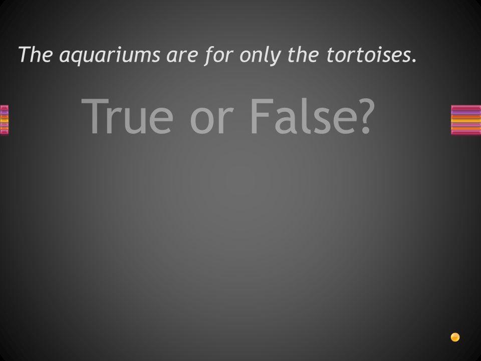 True or False The aquariums are for only the tortoises.