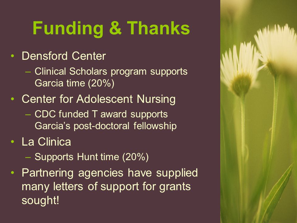 Funding & Thanks Densford Center –Clinical Scholars program supports Garcia time (20%) Center for Adolescent Nursing –CDC funded T award supports Garcia's post-doctoral fellowship La Clinica –Supports Hunt time (20%) Partnering agencies have supplied many letters of support for grants sought!