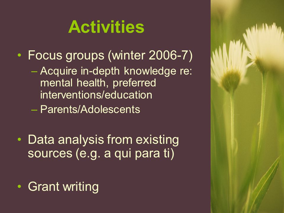 Activities Focus groups (winter 2006-7) –Acquire in-depth knowledge re: mental health, preferred interventions/education –Parents/Adolescents Data analysis from existing sources (e.g.