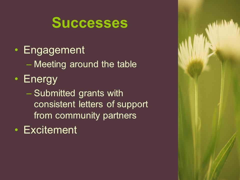 Successes Engagement –Meeting around the table Energy –Submitted grants with consistent letters of support from community partners Excitement