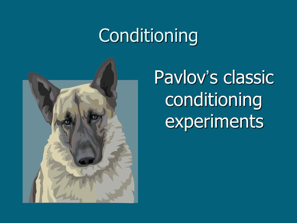 Conditioning Pavlov's classic conditioning experiments