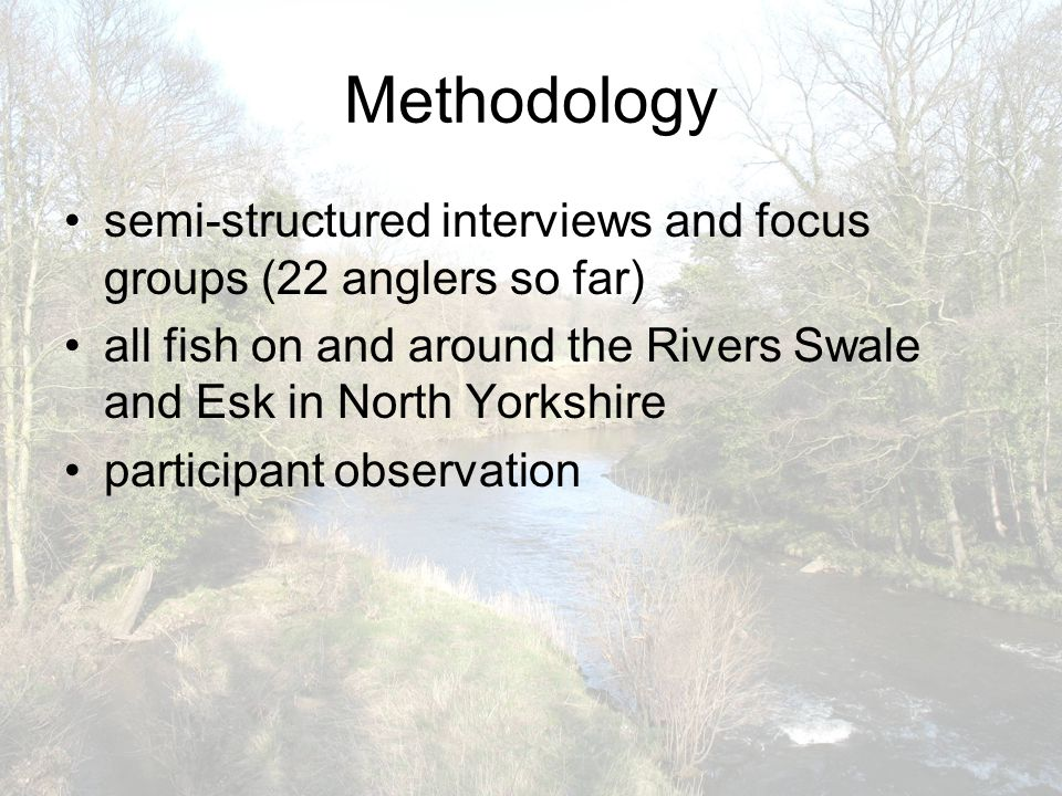 Methodology semi-structured interviews and focus groups (22 anglers so far) all fish on and around the Rivers Swale and Esk in North Yorkshire participant observation