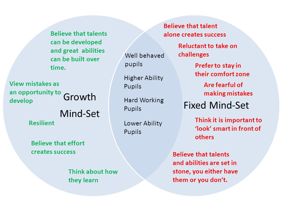 Growth Mind-Set Fixed Mind-Set View mistakes as an opportunity to develop Think about how they learn Higher Ability Pupils Hard Working Pupils Believe that effort creates success Resilient Believe that talents can be developed and great abilities can be built over time.