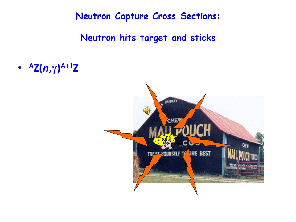 Neutron Capture Cross Sections: Neutron hits target and sticks A Z(n,  ) A+1 Z