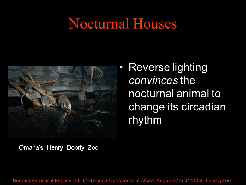 Bernard Harrison & Friends Ltd, 61st Annual Conference of WAZA, August 27 to 31 2006, Leipzig Zoo Nocturnal Houses Reverse lighting convinces the nocturnal animal to change its circadian rhythm Omaha's Henry Doorly Zoo