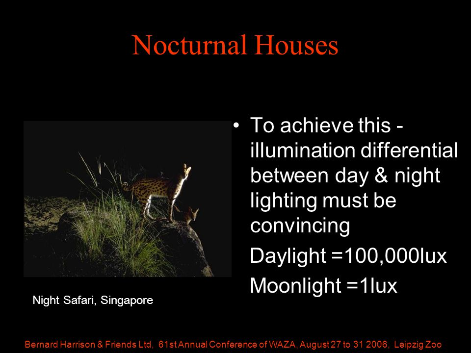 Bernard Harrison & Friends Ltd, 61st Annual Conference of WAZA, August 27 to 31 2006, Leipzig Zoo Nocturnal Houses To achieve this - illumination differential between day & night lighting must be convincing Daylight =100,000lux Moonlight =1lux Night Safari, Singapore