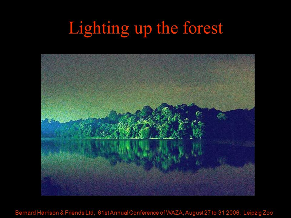 Bernard Harrison & Friends Ltd, 61st Annual Conference of WAZA, August 27 to 31 2006, Leipzig Zoo Lighting up the forest