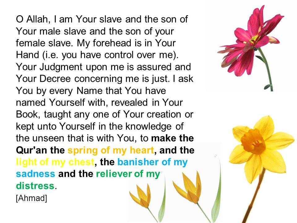 O Allah, I am Your slave and the son of Your male slave and the son of your female slave.