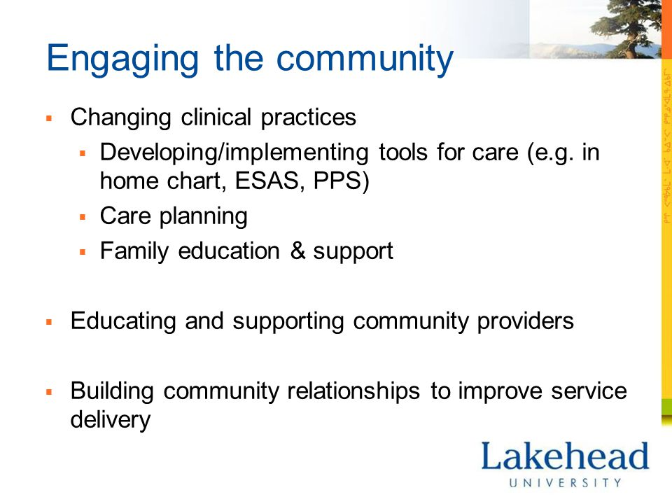 Engaging the community  Changing clinical practices  Developing/implementing tools for care (e.g.