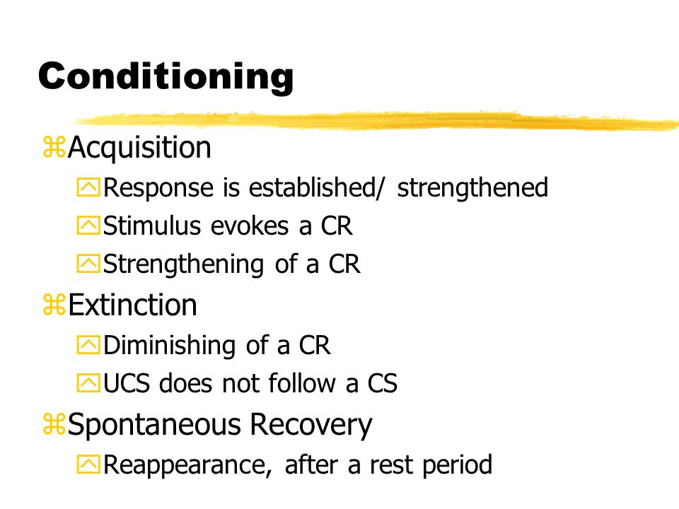Conditioning zAcquisition yResponse is established/ strengthened yStimulus evokes a CR yStrengthening of a CR zExtinction yDiminishing of a CR yUCS does not follow a CS zSpontaneous Recovery yReappearance, after a rest period