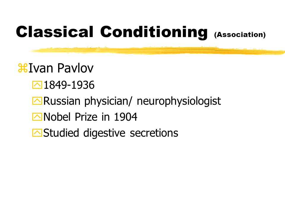 Classical Conditioning (Association) zIvan Pavlov y1849-1936 yRussian physician/ neurophysiologist yNobel Prize in 1904 yStudied digestive secretions