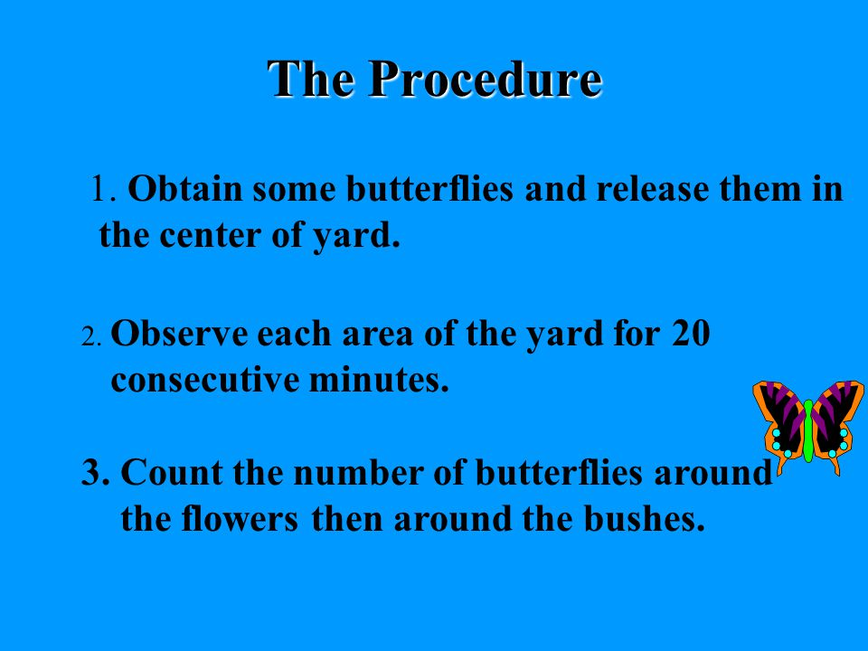 # 4 WRITE DOWN THE PROCEDURES List the procedures that test your hypothesis