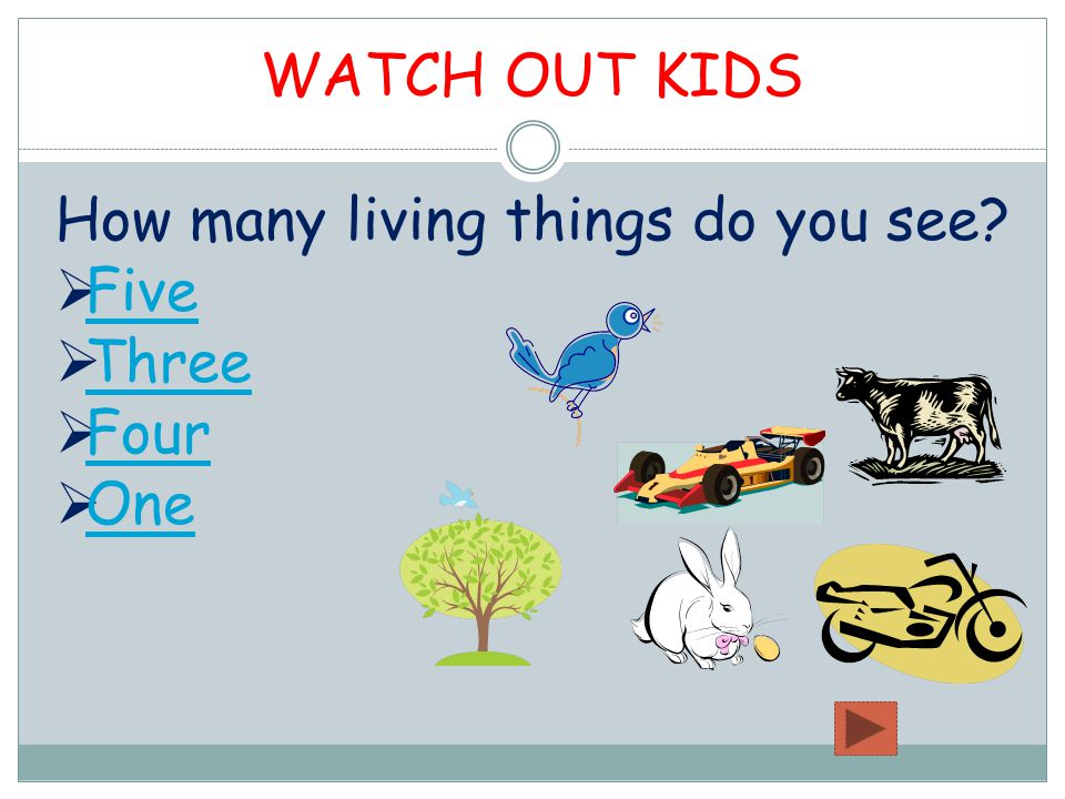 How many living things do you see  Five Five  Three Three  Four Four  One One WATCH OUT KIDS