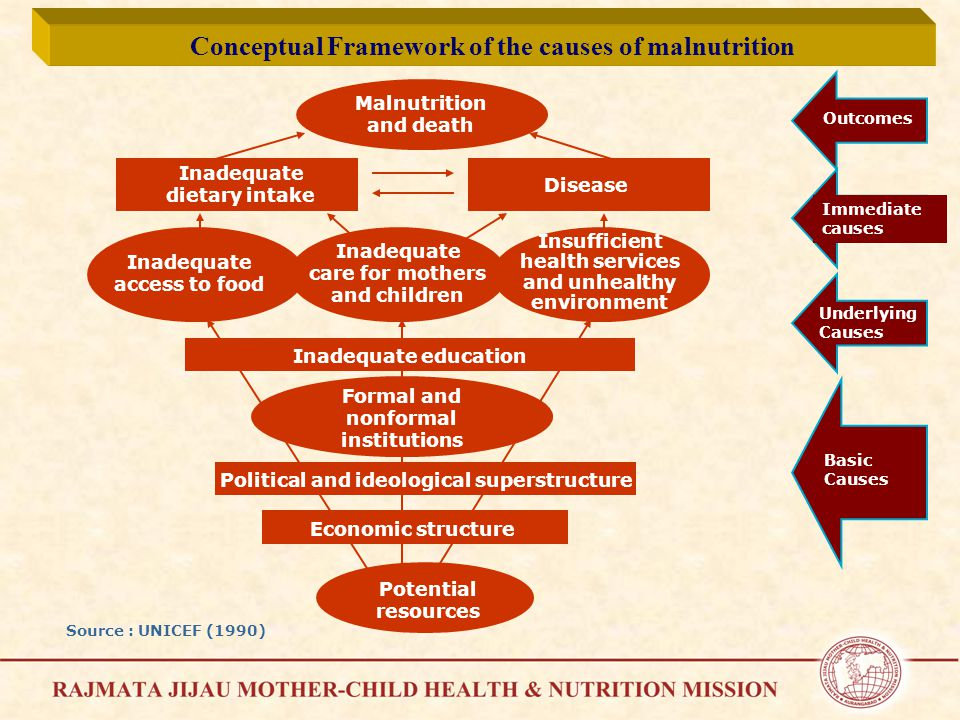 Malnutrition and death Inadequate dietary intake Disease Inadequate education Formal and nonformal institutions Political and ideological superstructure Economic structure Potential resources Inadequate access to food Inadequate care for mothers and children Insufficient health services and unhealthy environment Immediate causes Outcomes Underlying Causes Basic Causes Source : UNICEF (1990) Conceptual Framework of the causes of malnutrition