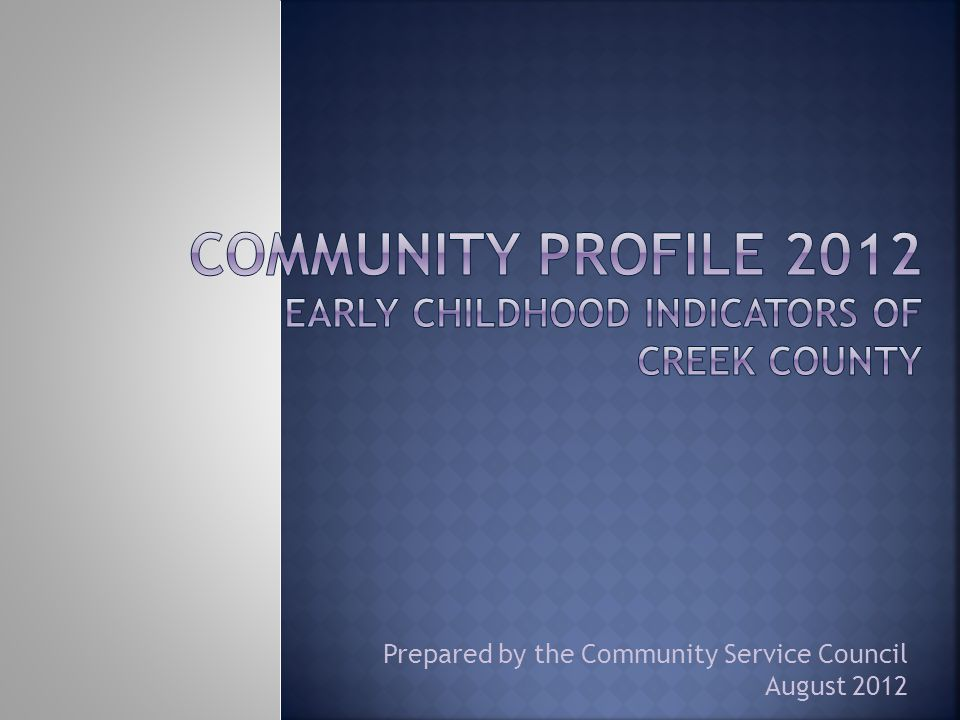 Prepared by the Community Service Council August 2012