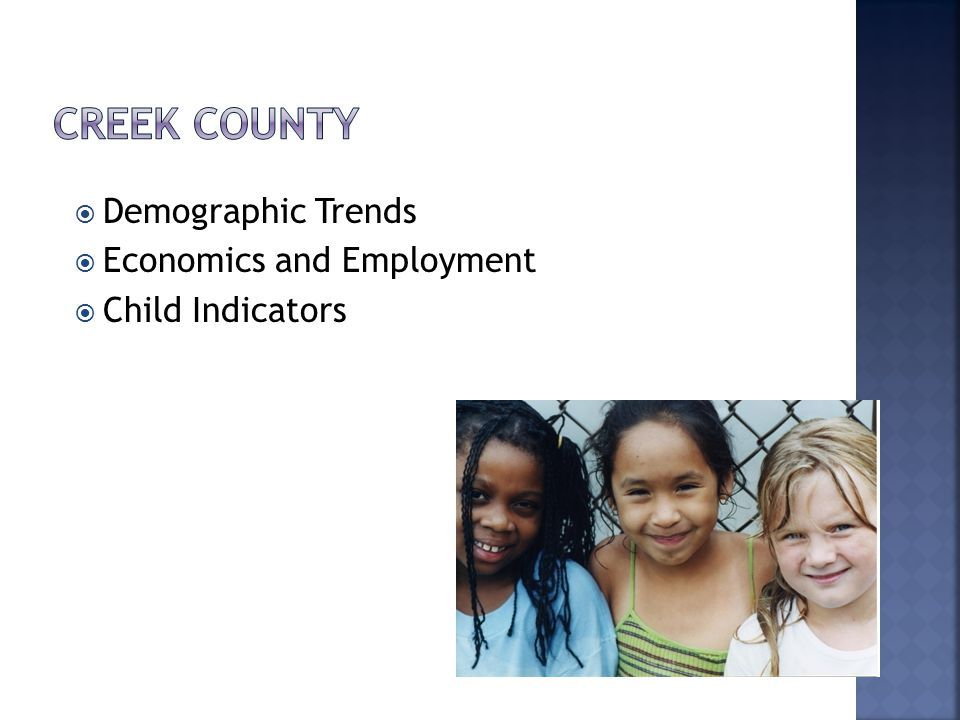  Demographic Trends  Economics and Employment  Child Indicators