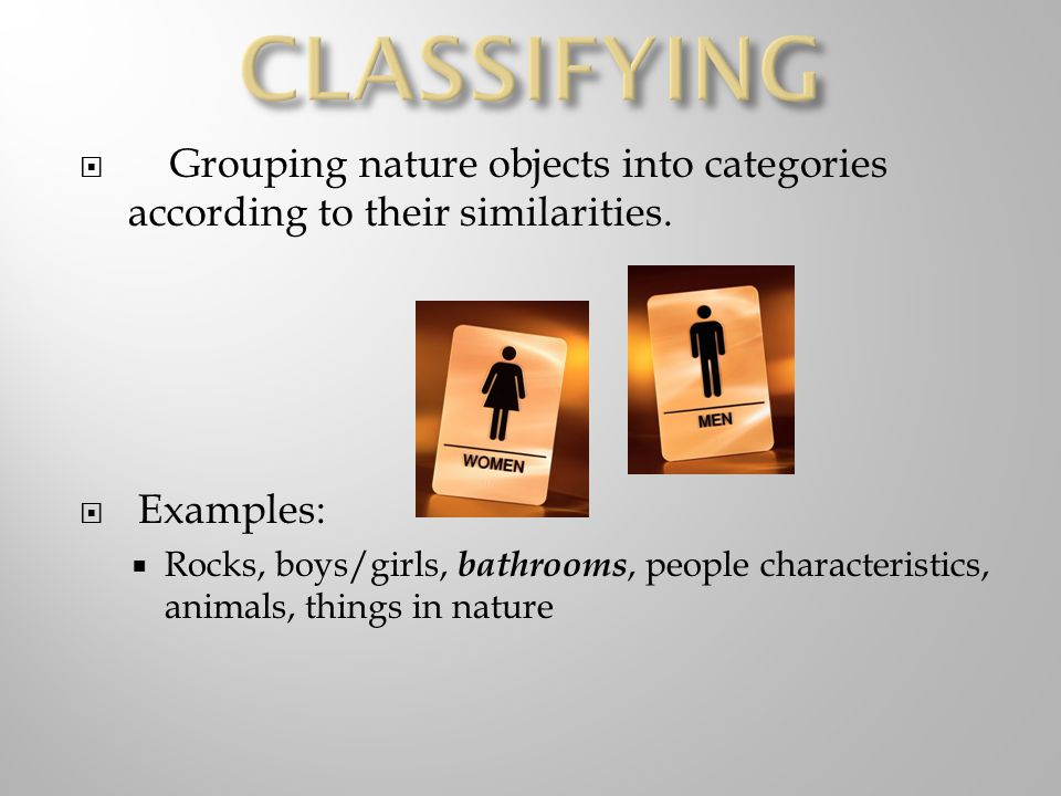  Grouping nature objects into categories according to their similarities.