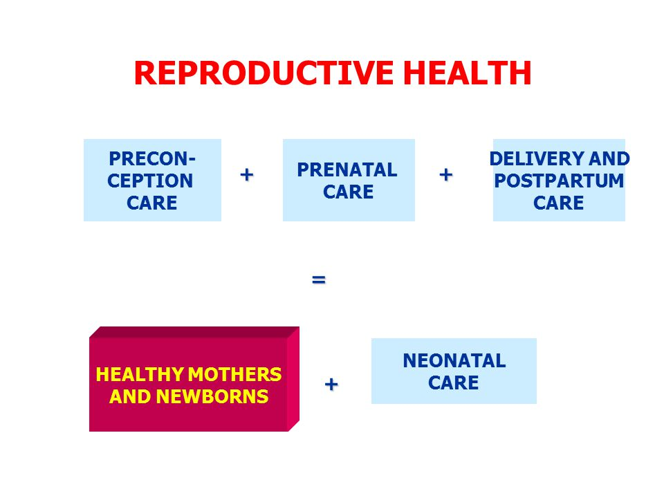 REPRODUCTIVE HEALTH PRECON- CEPTION CARE PRENATAL CARE DELIVERY AND POSTPARTUM CARE HEALTHY MOTHERS AND NEWBORNS NEONATAL CARE ++ = +