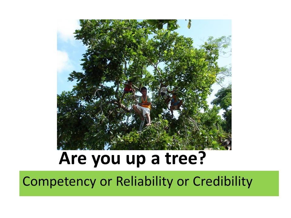 Are you up a tree Competency or Reliability or Credibility