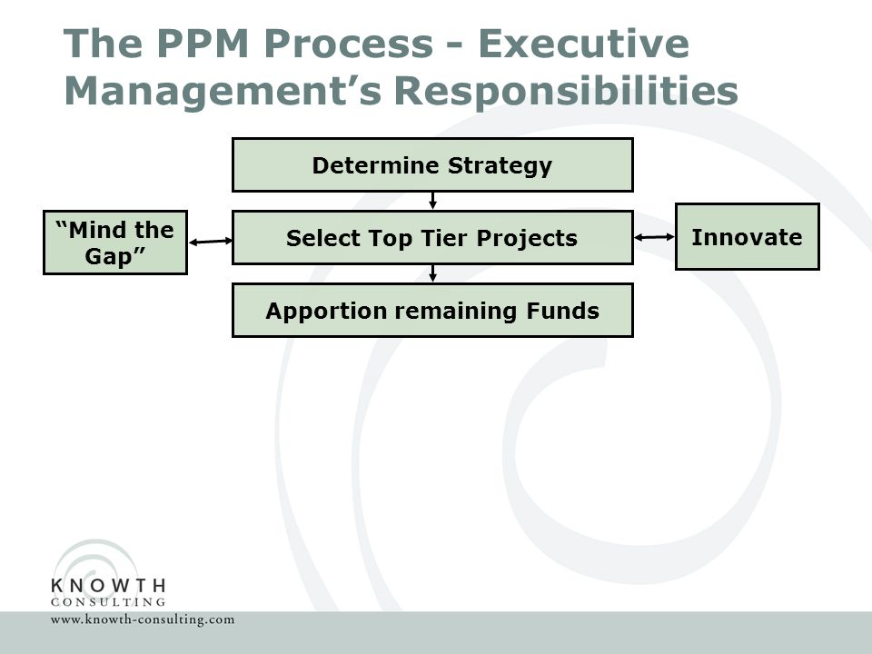 The PPM Process - Executive Management's Responsibilities Determine Strategy Select Top Tier Projects Innovate Mind the Gap Apportion remaining Funds