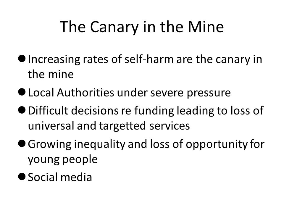 The Canary in the Mine Increasing rates of self-harm are the canary in the mine Local Authorities under severe pressure Difficult decisions re funding leading to loss of universal and targetted services Growing inequality and loss of opportunity for young people Social media