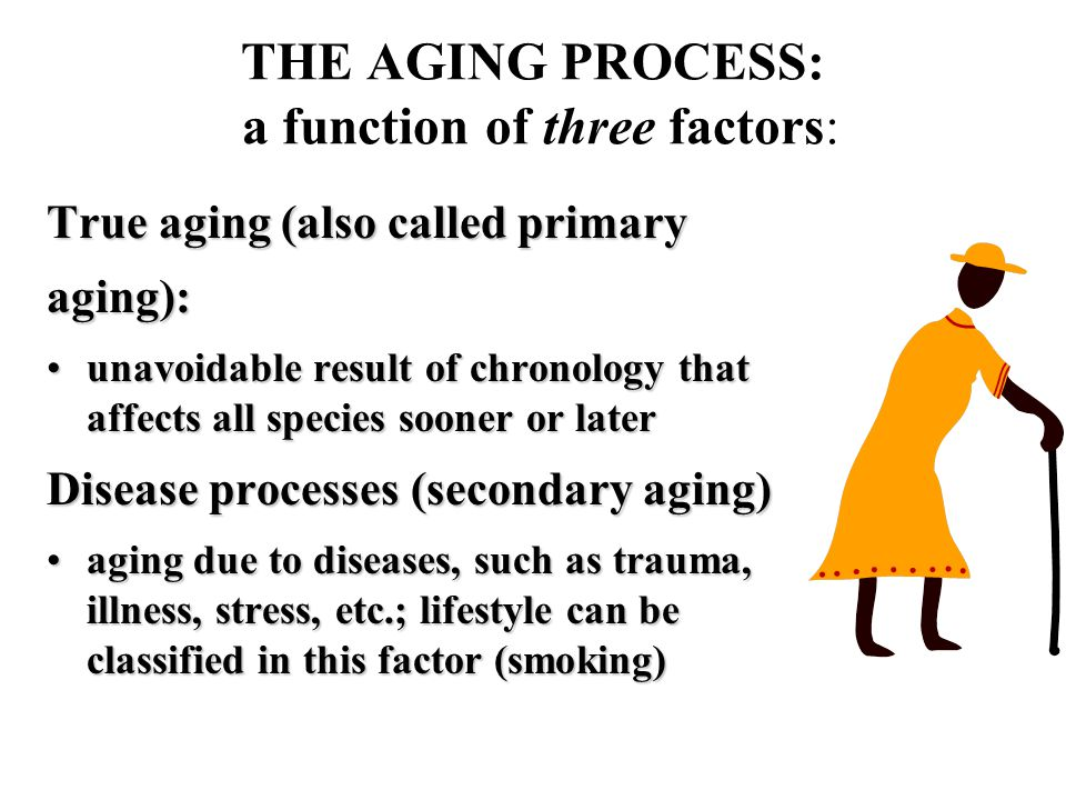THE AGING PROCESS: a function of three factors: True aging (also called primary aging): unavoidable result of chronology that affects all species sooner or laterunavoidable result of chronology that affects all species sooner or later Disease processes (secondary aging) aging due to diseases, such as trauma, illness, stress, etc.; lifestyle can be classified in this factor (smoking)aging due to diseases, such as trauma, illness, stress, etc.; lifestyle can be classified in this factor (smoking)