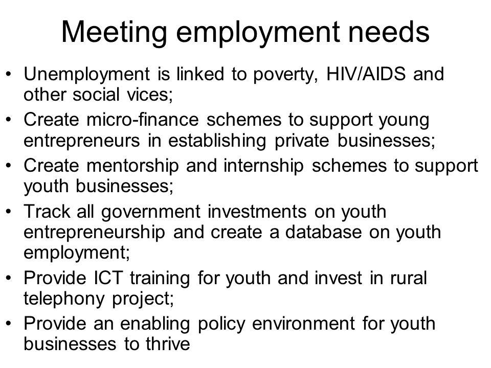Meeting employment needs Unemployment is linked to poverty, HIV/AIDS and other social vices; Create micro-finance schemes to support young entrepreneurs in establishing private businesses; Create mentorship and internship schemes to support youth businesses; Track all government investments on youth entrepreneurship and create a database on youth employment; Provide ICT training for youth and invest in rural telephony project; Provide an enabling policy environment for youth businesses to thrive