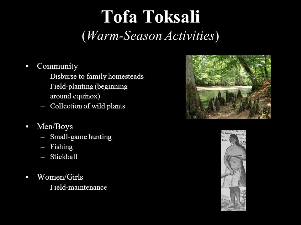 Tofa Toksali (Warm-Season Activities) Community –Disburse to family homesteads –Field-planting (beginning around equinox) –Collection of wild plants Men/Boys –Small-game hunting –Fishing –Stickball Women/Girls –Field-maintenance