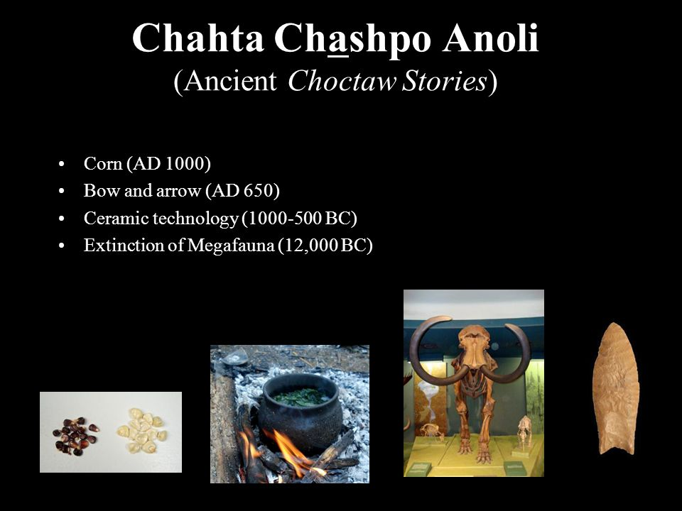 Chahta Chashpo Anoli (Ancient Choctaw Stories) Corn (AD 1000) Bow and arrow (AD 650) Ceramic technology (1000-500 BC) Extinction of Megafauna (12,000 BC)
