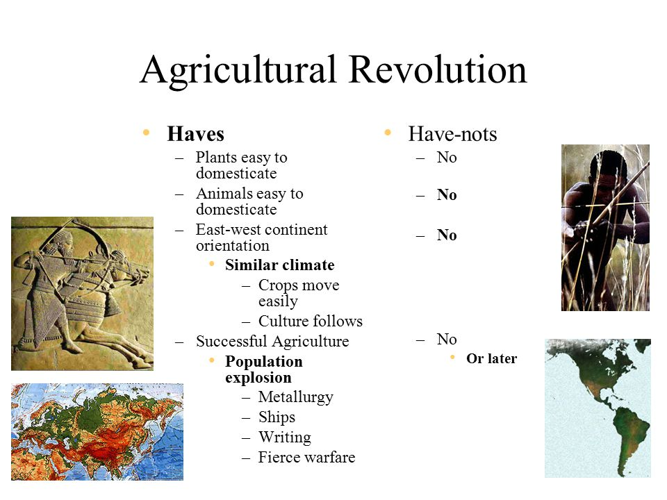 Agricultural Revolution Haves –Plants easy to domesticate –Animals easy to domesticate –East-west continent orientation Similar climate –Crops move easily –Culture follows –Successful Agriculture Population explosion –Metallurgy –Ships –Writing –Fierce warfare Have-nots –No Or later