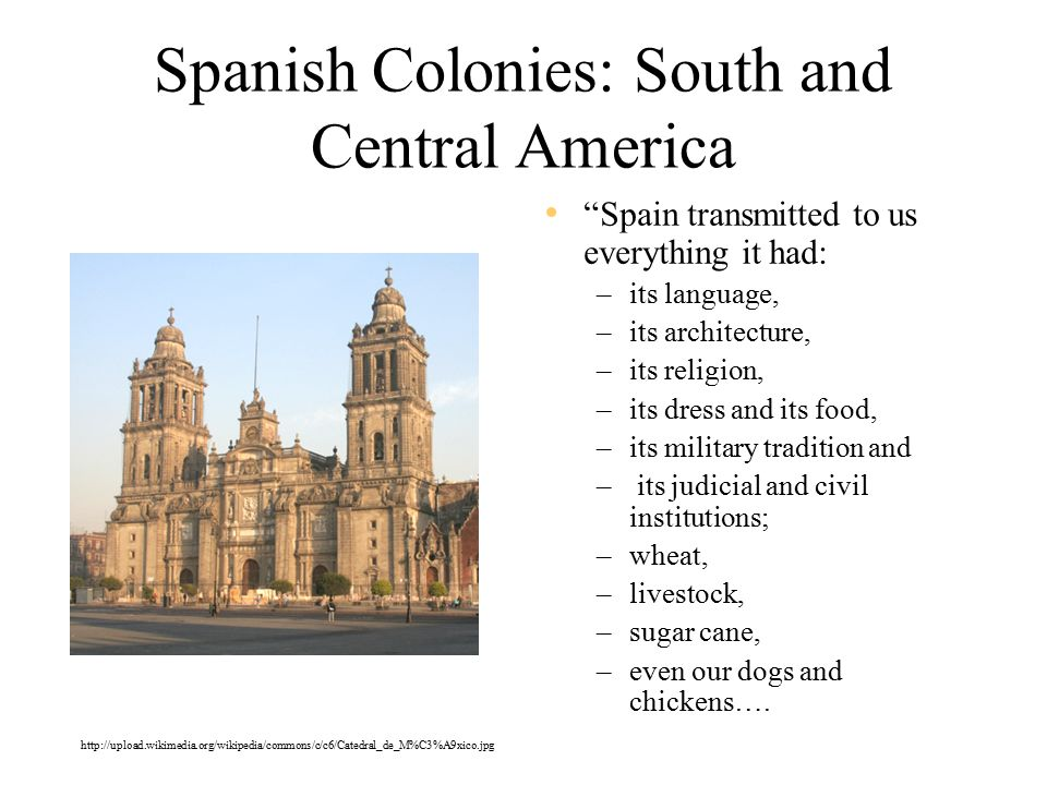 Spanish Colonies: South and Central America Spain transmitted to us everything it had: –its language, –its architecture, –its religion, –its dress and its food, –its military tradition and – its judicial and civil institutions; –wheat, –livestock, –sugar cane, –even our dogs and chickens….