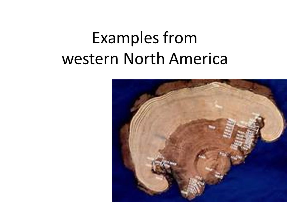 Examples from western North America