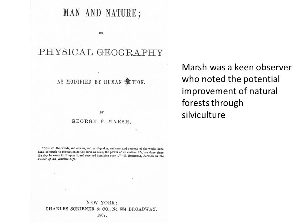 Marsh was a keen observer who noted the potential improvement of natural forests through silviculture